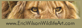 Eric Wilson Wildlife Art